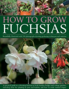 How to Grow Fuchsias