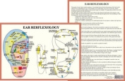 Ear Reflexology - A4