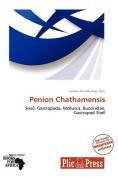 Penion Chathamensis