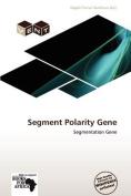 Segment Polarity Gene