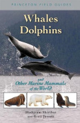 Whales, Dolphins & Sea Mammals