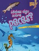 Sabes Algo Sobre Peces? (Do You Know about Fish?) (Libros Rayo Conoce Los Grupos de Animales
