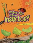 Sabes Algo Sobre Insectos? (Do You Know about Insects?) (Libros Rayo Conoce Los Grupos de Animales