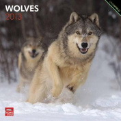 Wolves 2013 Square 12x12 Wall Calendar