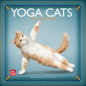 Yoga Cats 2013 Square 12x12 Wall Calendar
