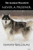 The Alaskan Malamute