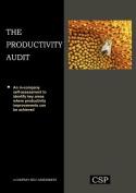 The Productivity Audit
