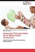 Aspectos Psicosociales de La Maternidad Temprana [Spanish]