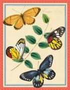 Asian Butterflies Keepsake Box