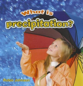 What is Precipitation?