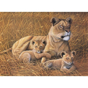 Royal & Langnickel Painting by Numbers Junior Large Art Activity Kit, African Lioness and Cubs