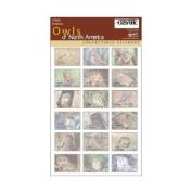 Impact Photographics IMP248SHS Sticker Sheet Owls NorthAmerica