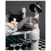 Checkerboard Cat