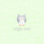 The Little Acorn Wall Art, Night Owl