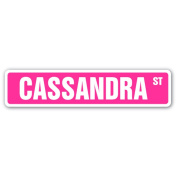 CASSANDRA Street Sign name kids childrens room door bedroom girls boys gift