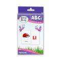 The Brainy Baby ABCs Flashcards