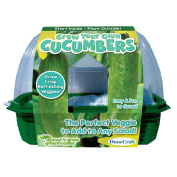 DuneCraft Grow Your Own Cucumbers Sprout and Grow Green house