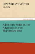 Adrift in the Wilds Or, the Adventures of Two Shipwrecked Boys