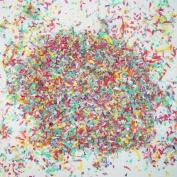 5 oz. Multi paper confetti