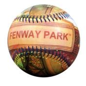 TDC games Unforgettaball - Fenway Park