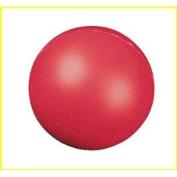 Champion Sports CHSHD4 High Density Coated Foam Ball 4In