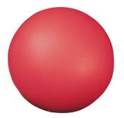 Champion Sports 18cm Coated High Density Foam Ball