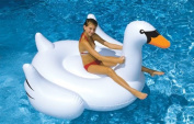 Blue Wave NT268 Giant Swan Rideable