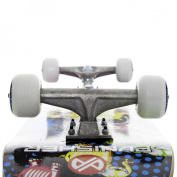 Punisher Skateboards Elephantasm  Complete 80cm Skateboard All Maple