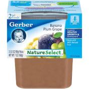 Gerber 2nd Foods Banana Plum Grape
