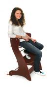 Badger Basket Embassy Wood High Chair - Cherry