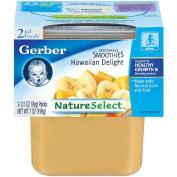 Gerber 2nd Foods Hawaiian Delight