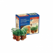 As Seen on TV Chia Herb Garden