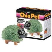 Joseph Enterprises CP040-16 Pig Chia Pet- Case of 16