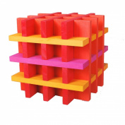 CitiBlocs CTBSW100 100 Piece Hot Colours Precision Cut Building Blocks
