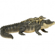 Safari LTD Incredible Creatures Alligator with Babies