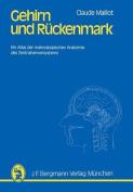 Gehirn Und Ruckenmark [GER]