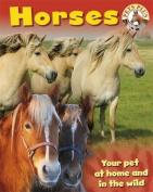 Horses (Pets Plus)