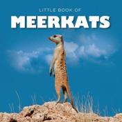 Little Book of Meerkats