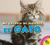 El Gato  [Spanish]