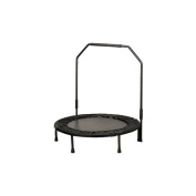 Sunny Health & Fitness 40' Foldable Trampoline with Stabilising Bar