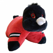 NFL - Atlanta Falcons Pillow Pet
