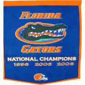 Florida Gators Official NCAA 60cm x 90cm Dynasty Wool Banner Flag by Winning Streak