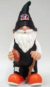 Team Gnome, Cincinnati Bengals