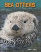 Sea Otters (Heinemann Infosearch