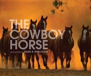 The Cowboy Horse