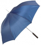 All-Weather 120cm Polyester Auto-Open Umbrella