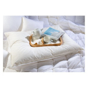 Downtown Company Oversized and Overfilled Slumber Pillow in White