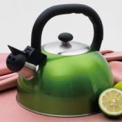 Evco International 77024 Satin Mist Metallic Cranberry 2.5l Tea Kettle