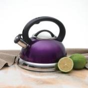 Creative Home Alexa 3.0 Whistling Tea Kettle Purple 2.8l