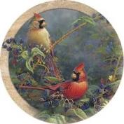 Thirstystone TSSM1 Natural Sandstone Coaster Set Cardinal Pair